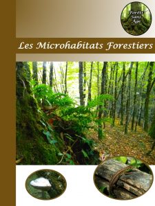 Les Microabitats Forestiers