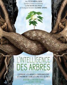 «L'intelligence des arbres» au cinéma de Nontron avec Forêts Sans Age