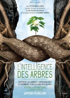 l-intelligence-des-arbres-68816-237-0